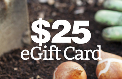 BloomingBulb eGift Card