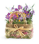 Cheerful Crocus Bulb Gift