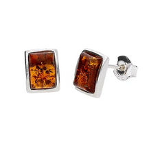 Load image into Gallery viewer, Amber Rectangular Stud Earrings