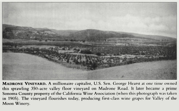 Madrone Ranch now Bedrock Vineyard in 1905 photo