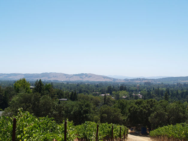 Southwest across Sonoma Valley floor