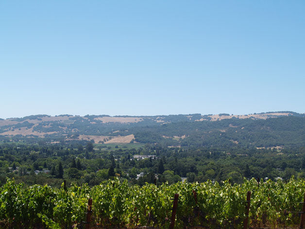 West Sonoma Valley