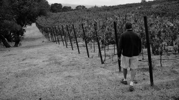 Peter Mathis, Mathis Vineyard, Sonoma Valley, California, Mathis Grenache