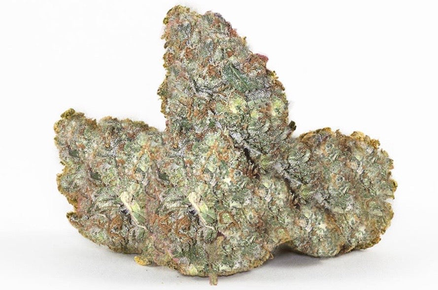 ISLAND PINK - INDICA