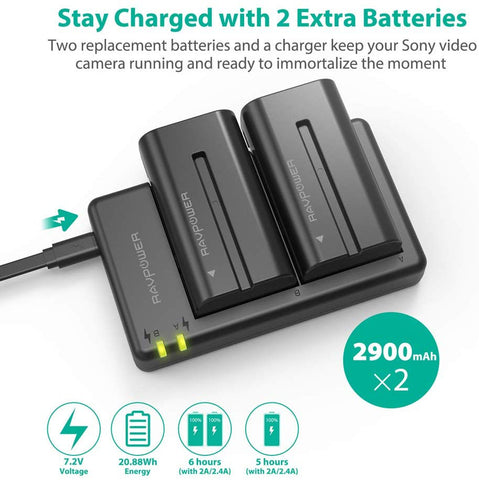 Dual Battery Pack NP-F550 + Charger