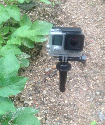 Short Spike Mount for GoPro