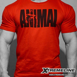 Animal M-Stak Iconic Red Tee Canada | xtremeline.ca