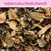 Indian Lotus Petals : Herbs - Mangalore Spice