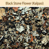 Black Stone Flower : Spices - Mangalore Spice