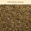 Dill Seeds : Spices - Mangalore Spice