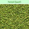 Fennel (Saunf) : Spices - Mangalore Spice