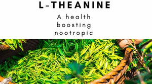 L-Theanine: A Health Boosting Nootropic