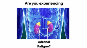 Is Your Body Suffering From Adrenal Fatigue?