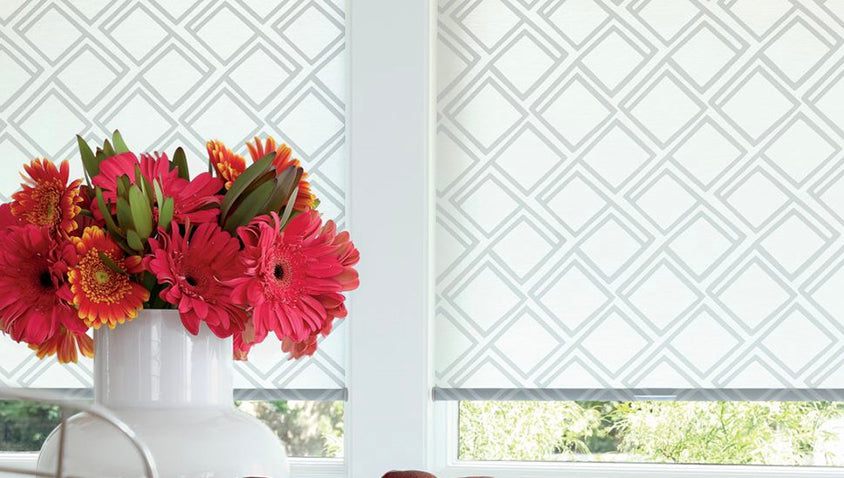 Roller and Screen Shades