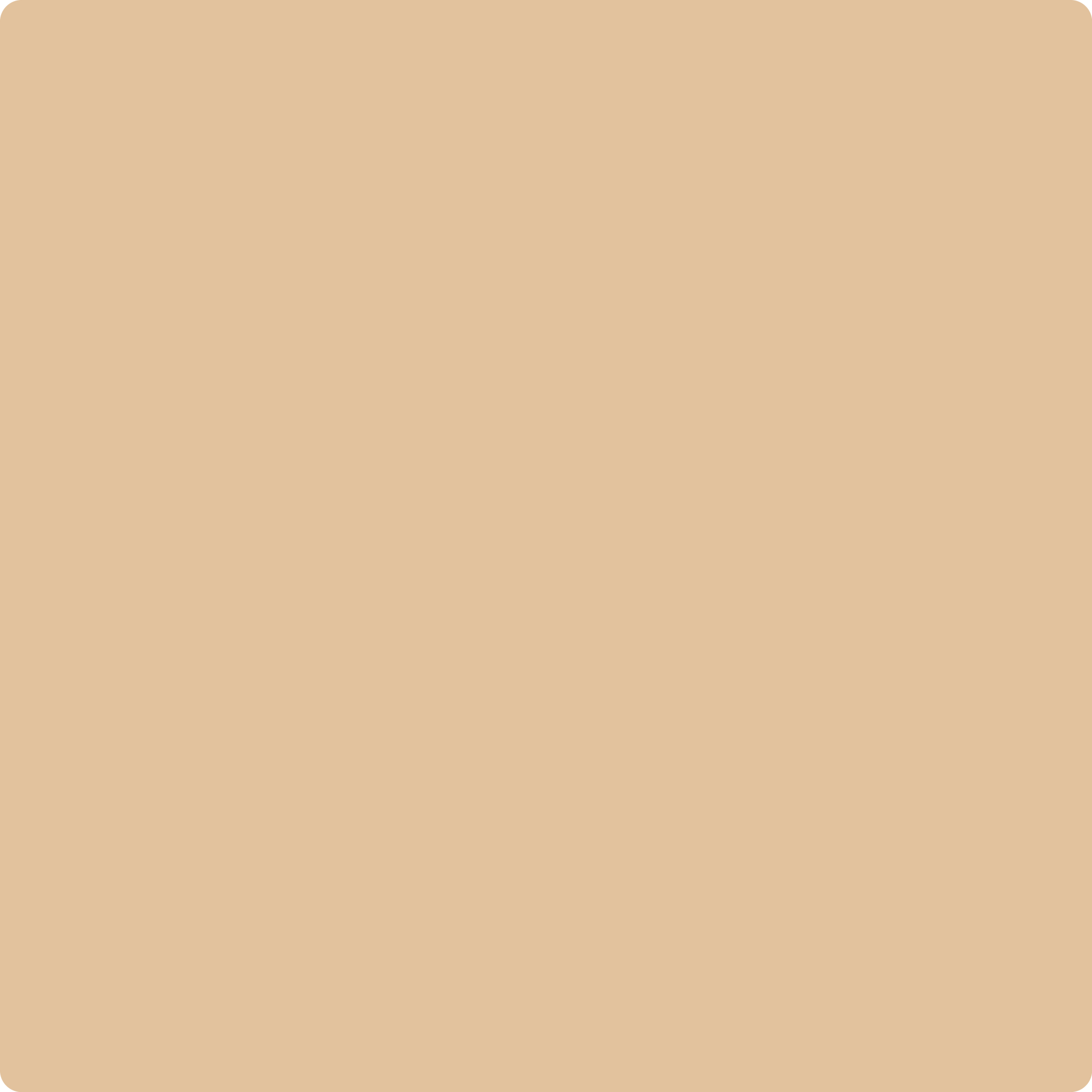 1144 Tucson Tan A Paint Color By Benjamin Moore Aboff S