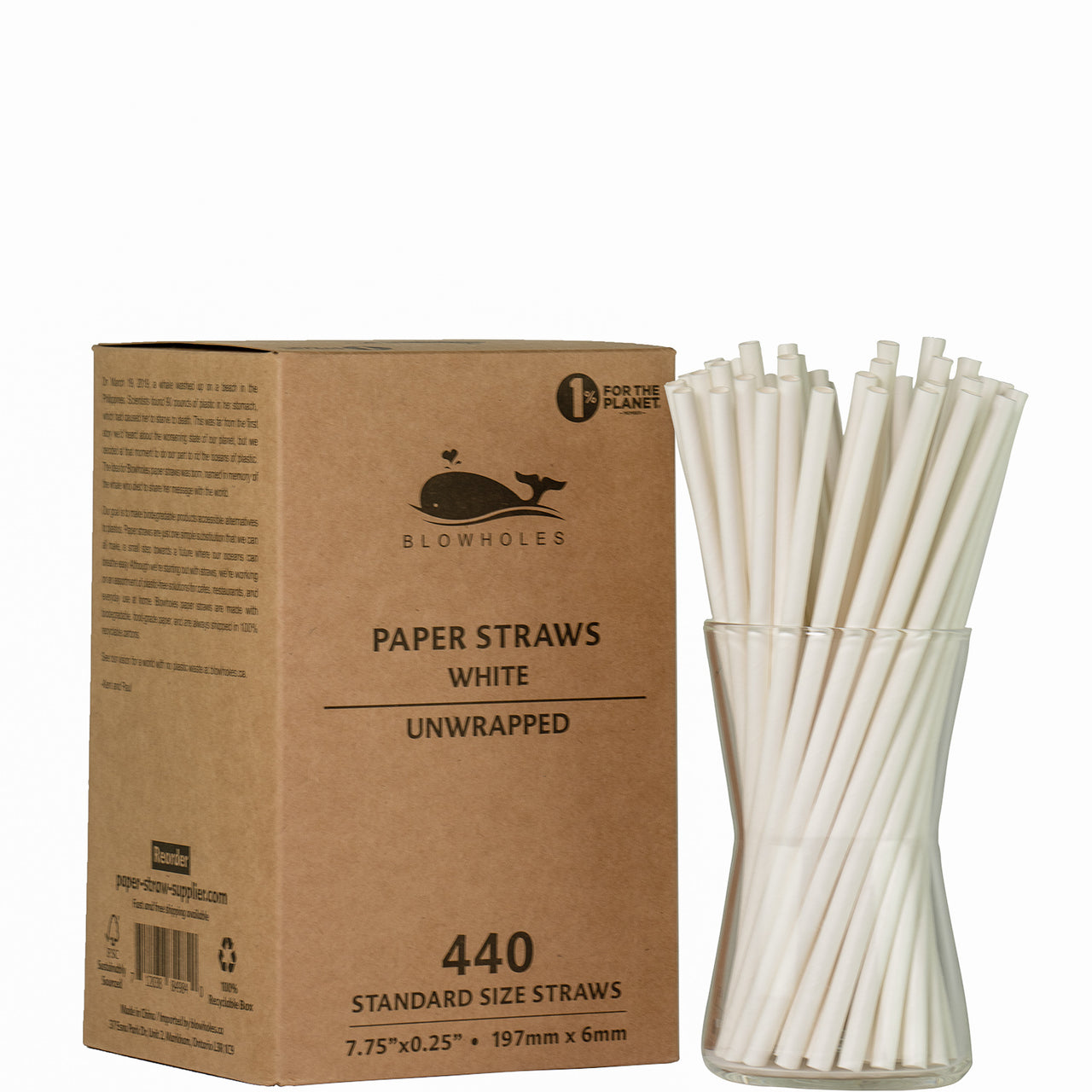 Blowholes Standard Size Paper Straws - NOT Individually Wrapped