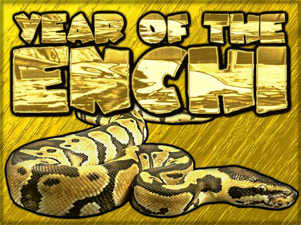 Year of the Enchi!