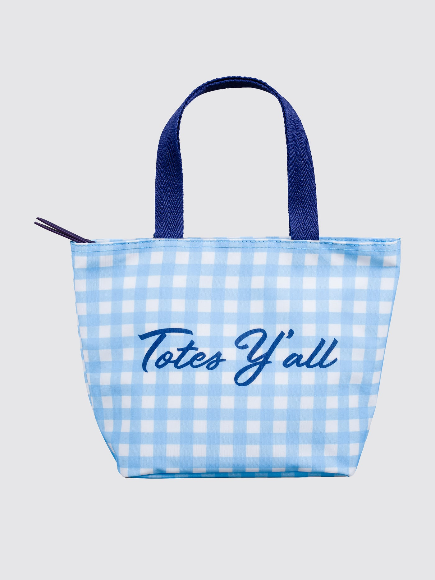 bfa33a6606 Totes Y'all Gingham Lunch Tote – Draper James
