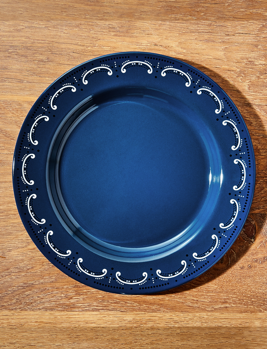 Draper James x Crate and Barrel Cookout Enamel Dinner Plate