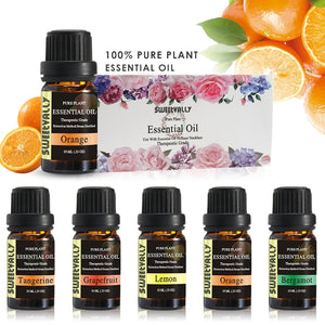 New 3 Style Essential Oil Set Friut  Flavor Essential Oil Plant Aromatherapy Essential Oil 10ml For Aromatherapy Lamp Humidifier