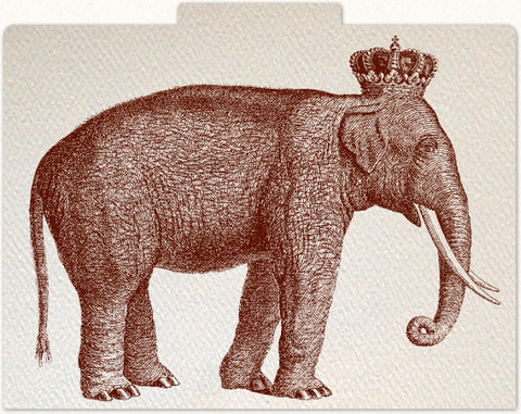Royal Elephant File Folders