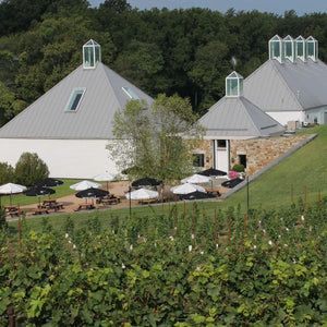 Boxwood Winery - Trellis - Virginia