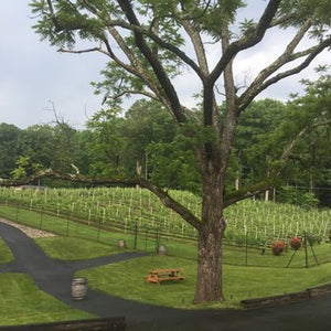 Paradise Springs Winery, Meritage Virginia 2014