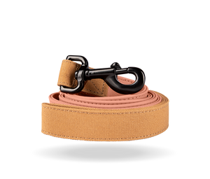 Salmon Leash
