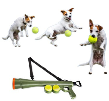 Image of Bazooka dog