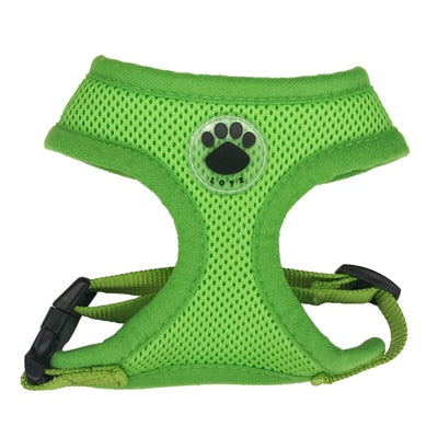 Paw LOVE Rubber Adjustable Soft Breathable harness