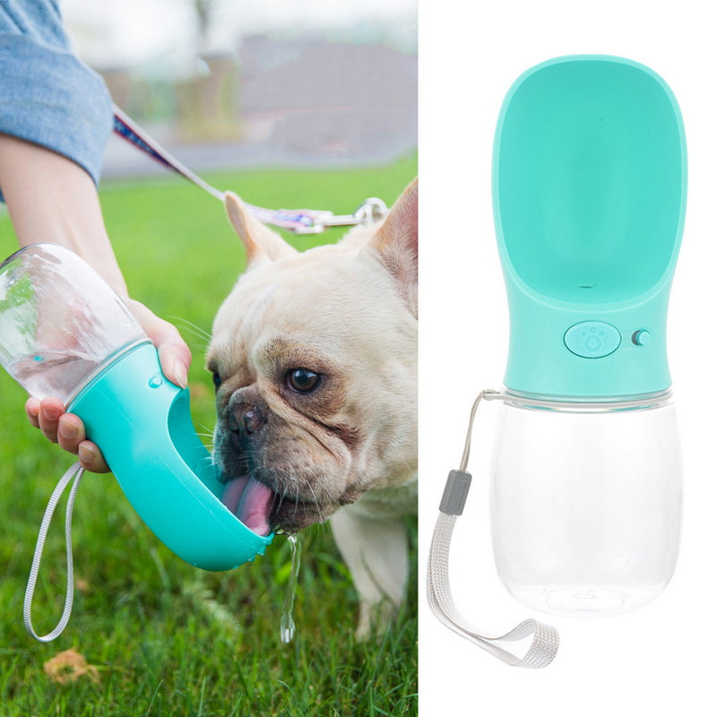 Puppy Drinking Bowl Outdoor