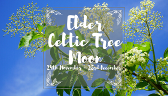 Celtic Elder Tree Moon