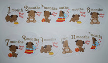Puppy Monthly baby stickers. Onesie month stickers.