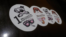 Puppy Monthly baby stickers. Onesie month stickers. Puppies holding your infants age