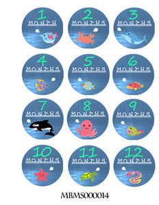 Monthly baby stickers. Under water. Under sea, dolphin, shark, fish, octopus, whale