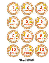 Monthly baby stickers. Giraffe themed Unisex onesie month stickers.