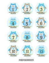 Monthly baby stickers. Blue owls bodysuit infants boys month labels