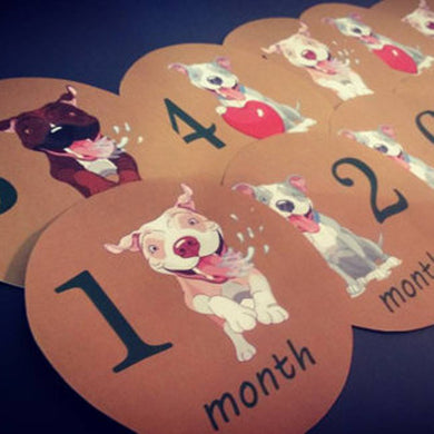 Pitbulls Monthly baby stickers. Onesie month stickers. Puppies, pitts, pitbulls, dogs