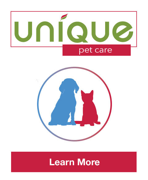 Unique Pet Care Best Pet Stain and Odor Removers Puppy Cats Hard Floors