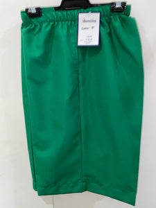 Domino Women's Shorts (Green)