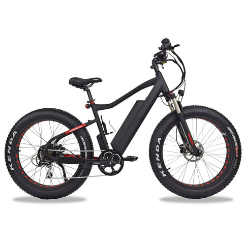 ELECTRIC FAT BIKE