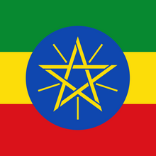 Load image into Gallery viewer, Ethiopia Guji Hambela