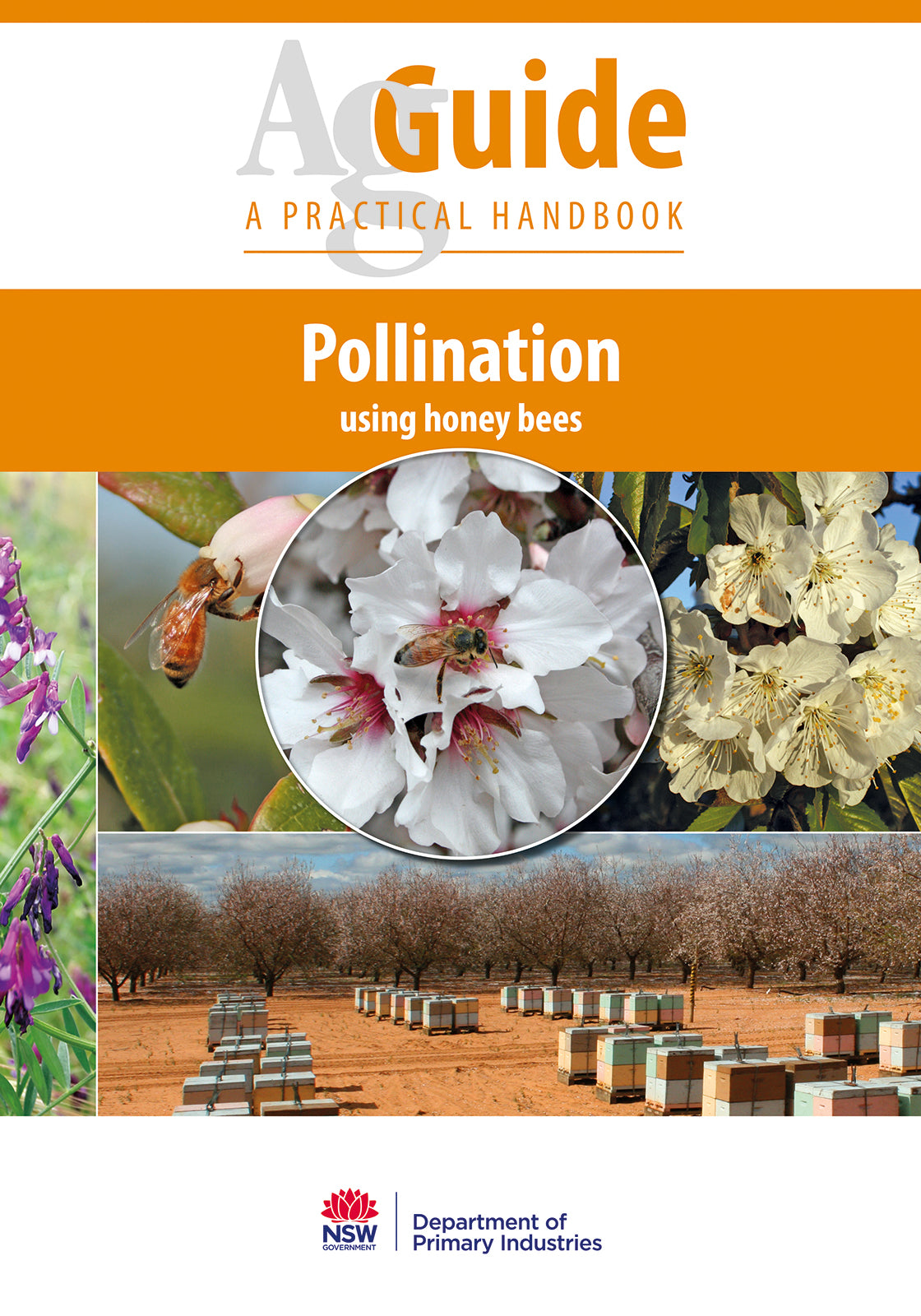Pollination Using Honey bees