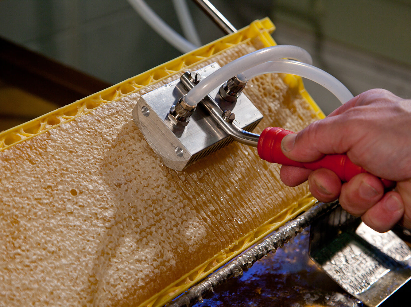 Honey Paw Uncapping Slit