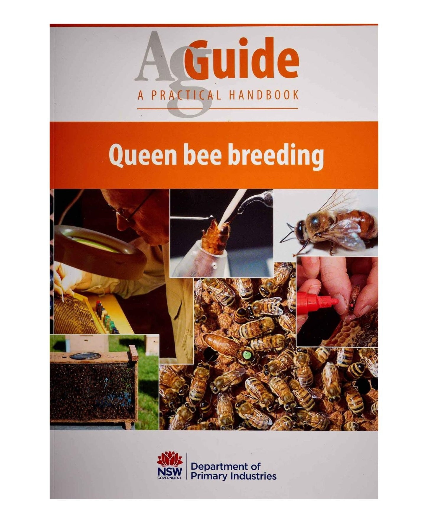 Queen Bee Breeding,Beekeeping,beekeeping gear,oz armour