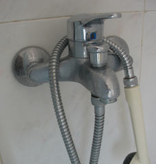 shower hose shown with shower head