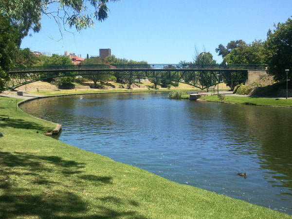 Torrens River Adelaide Paddle Boarding