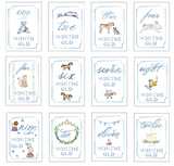 Month by Month Baby Cards