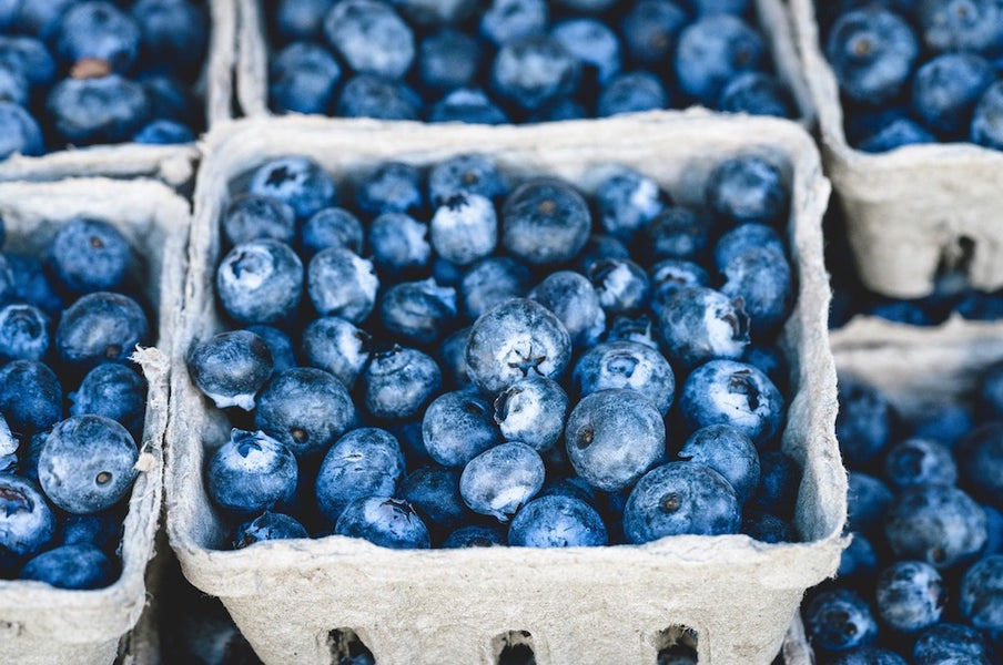 Why Blueberries are a superfood, according to science