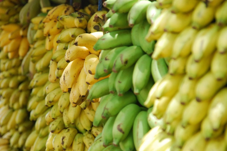 The Many Health Benefits of the Banana